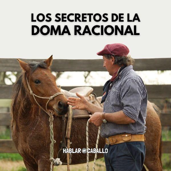Imagem principal do produto Los Secretos de la Doma Racional