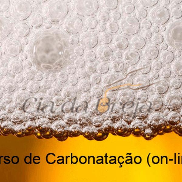 Imagem principal do produto Carbonatação Forçada e Refermentação de Cervejas