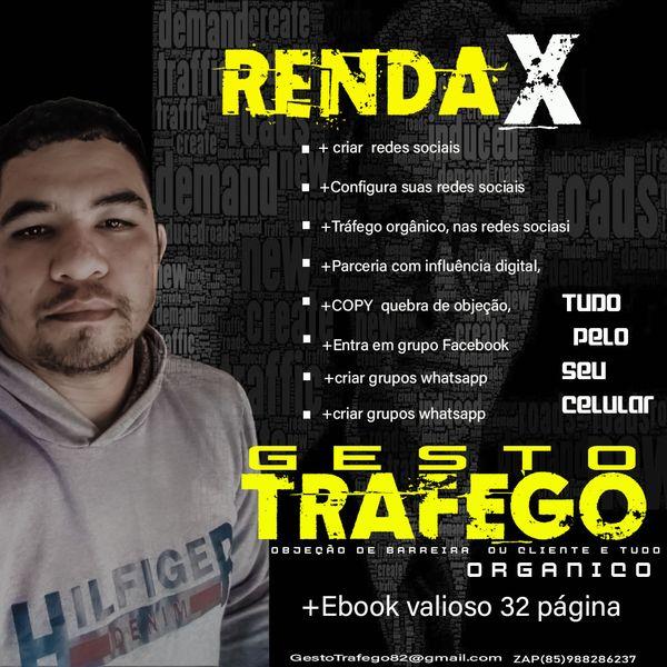 Imagem principal do produto GESTOR DE  TRAFEGO ORGANICO rendaX