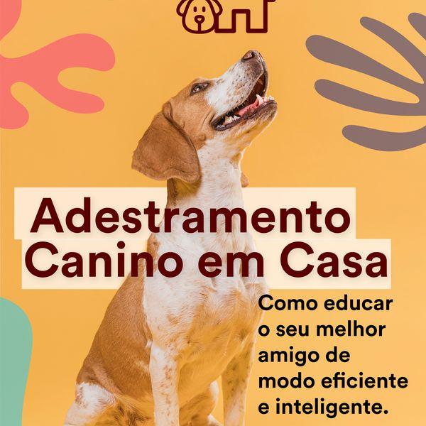 Imagem principal do produto Adestramento Canino Em Casa