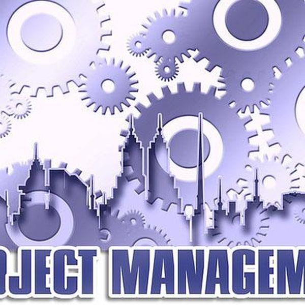 Imagem principal do produto Como llevar a cabo la administracion de los proyectos en las organizaciones y poderlo trasladar  a tu vida personal.