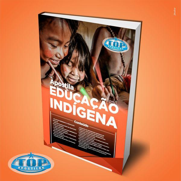 Imagem principal do produto Ebook Educação Indígena