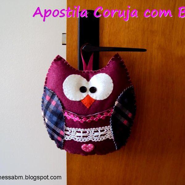 Imagem principal do produto Apostila Coruja com Bolso em Feltro