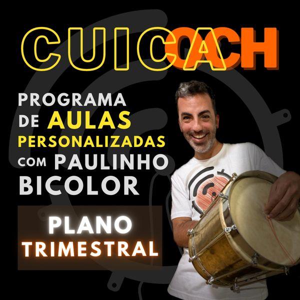 Imagem principal do produto CUICOACH ::::: Personal Cuíca Trainer ::::: Plano trimestral [PROMO]
