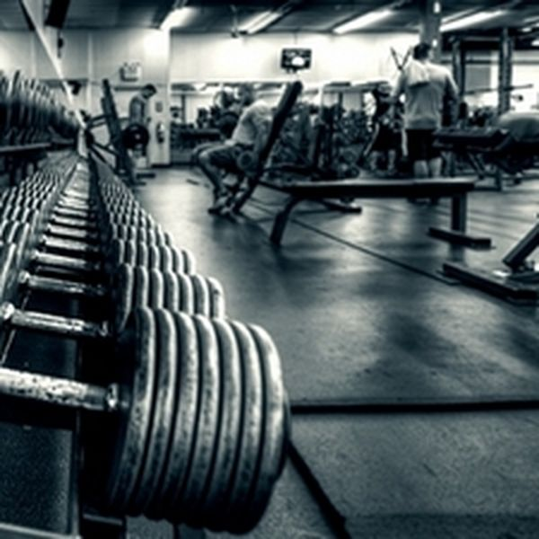 Imagem principal do produto Guia Definitivo da Musculação