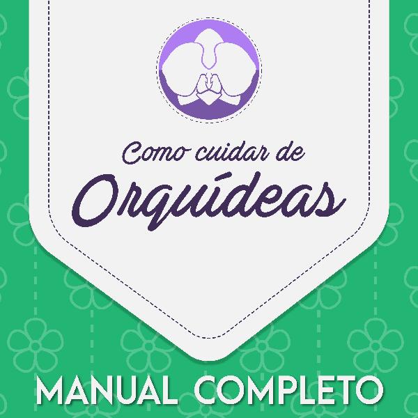 cuidar de orquídeas + bonus