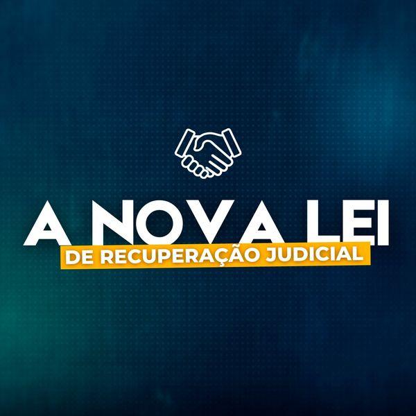Imagem principal do produto A Nova Lei de Recuperação Judicial