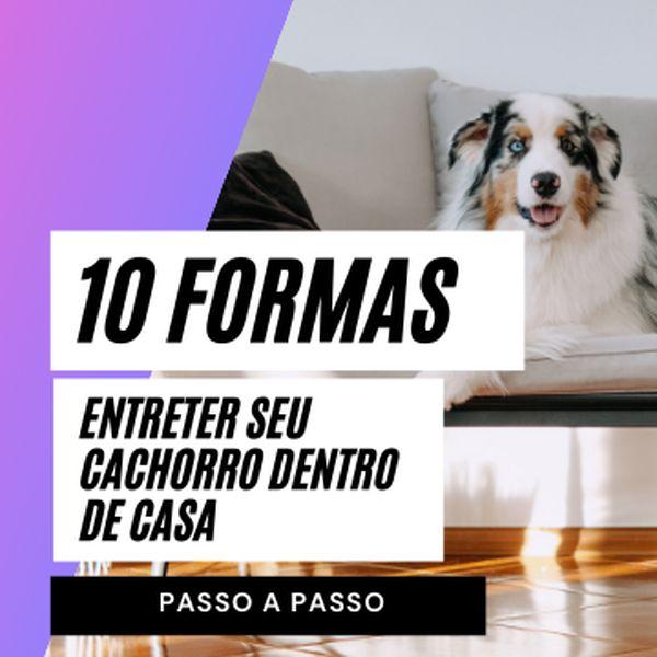 Imagem principal do produto 10 formas de entreter seu cachorro dentro de casa