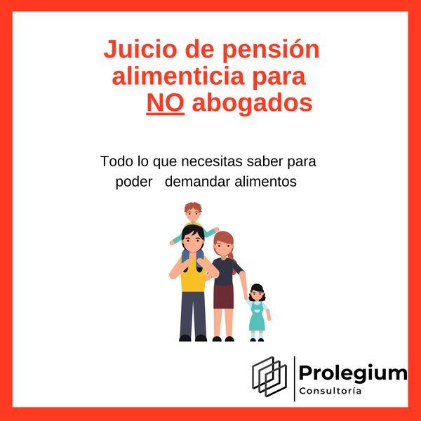 Imagem principal do produto  Juicio de Pensión Alimenticia para no abogados