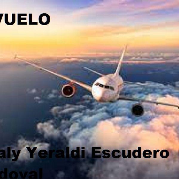 Imagem principal do produto El vuelo
