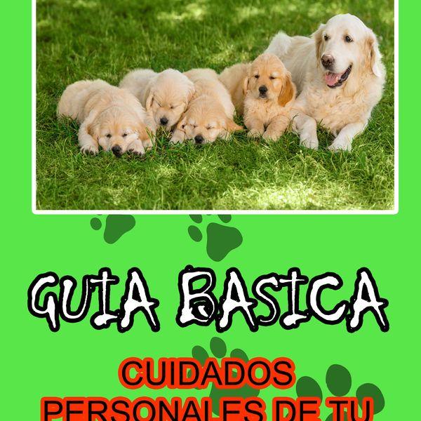 Imagem principal do produto GUIA BASICA CUIDADOS PERSONALES DE TU PERRO
