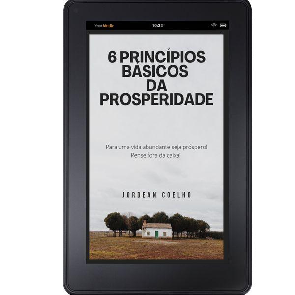 Imagem principal do produto 6 Princípios básicos da prosperidade