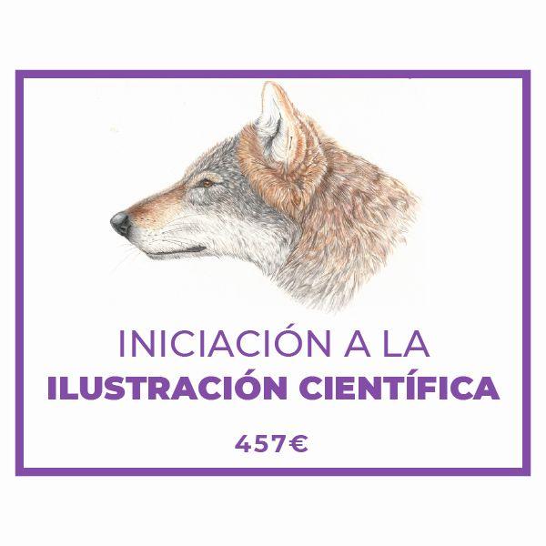 Imagem principal do produto Iniciación a la Ilustración Científica (Naturalista)