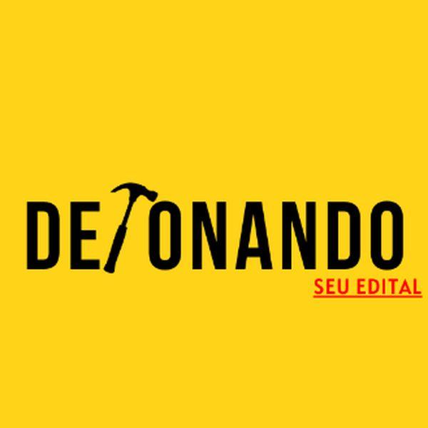 Imagem principal do produto DETONANDO SEU EDITAL