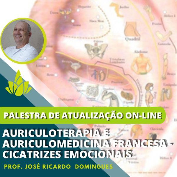 Imagem principal do produto Auriculoterapia e Auriculomedicina Francesa - Cicatrizes Emocionais