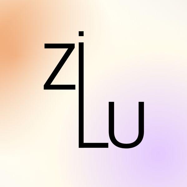Imagem principal do produto Mentoria Individual Zilu.Co