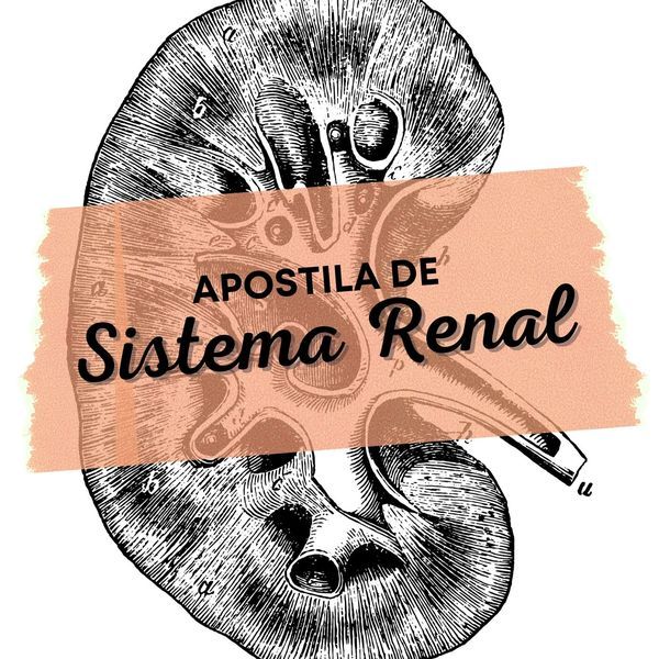 Imagem principal do produto Apostila de Sistema Renal
