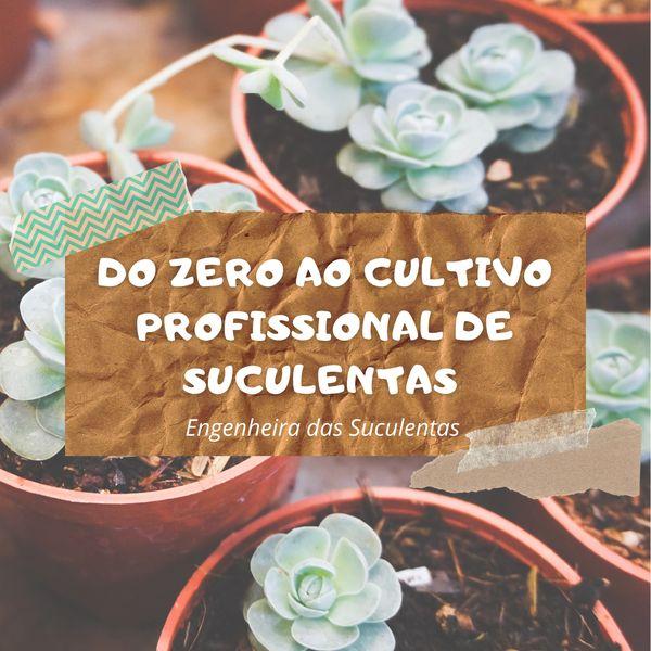 Imagem principal do produto Do zero ao cultivo profissional de suculentas