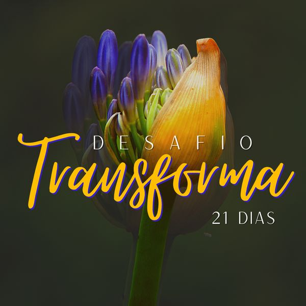 Imagem principal do produto Desafio Transforma 21 dias: Transformando sua autoestima para vencer até os dias mais difíceis