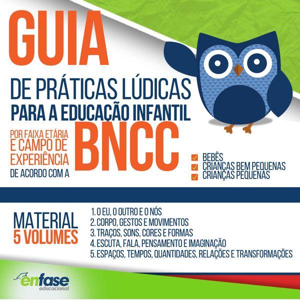 Imagem principal do produto Guia de Práticas Lúdicas para Educação Infantil de acordo com a BNCC