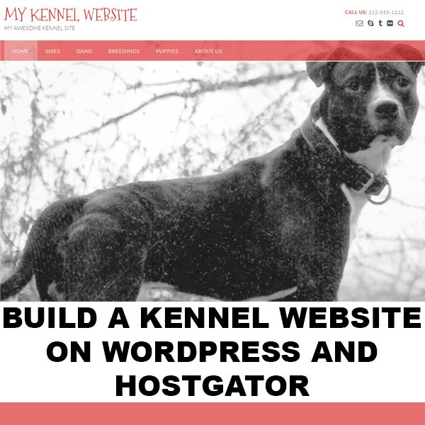 Imagem principal do produto Build a Breeder's Kennel Website on Wordpress
