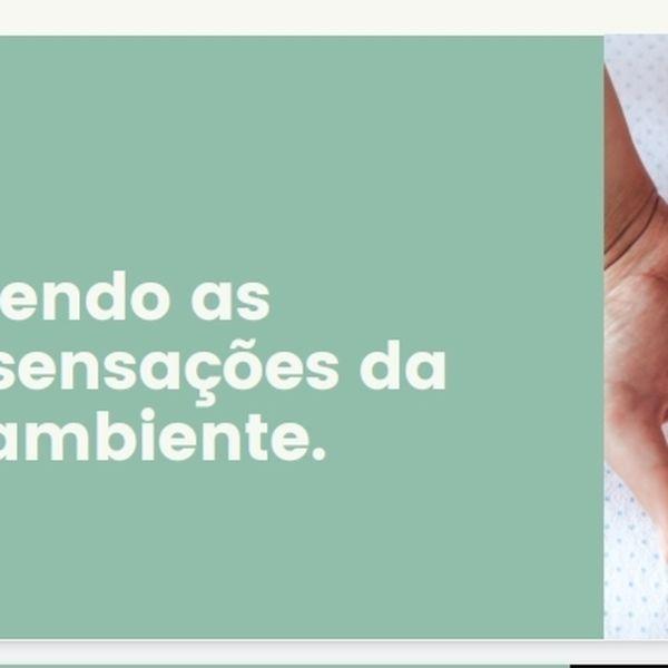 Imagem principal do produto Compreendendo as emoções e sensações da criança no ambiente.