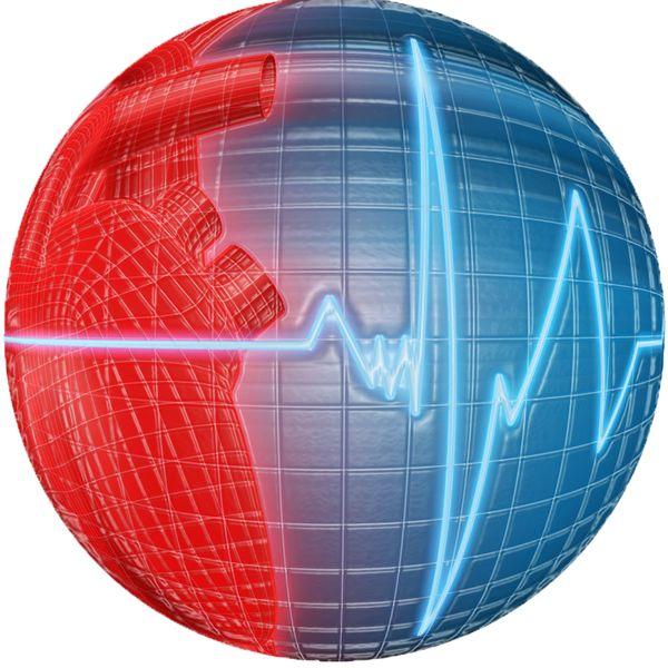Imagem principal do produto Como montar e gerir o seu próprio consultório   Cardiopapers