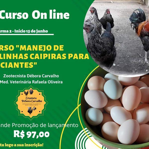 Imagem principal do produto CURSO CRIAÇÃO DE GALINHAS CAIPIRAS PARA INICIANTES 2.0