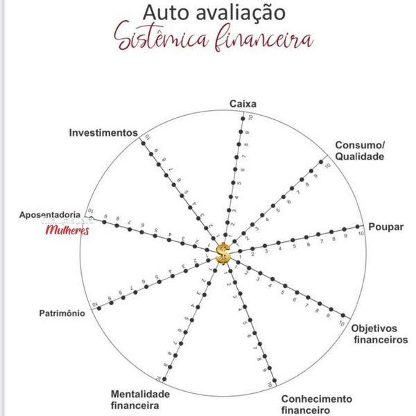Imagem principal do produto Auto avaliação Sistêmica financeira.
