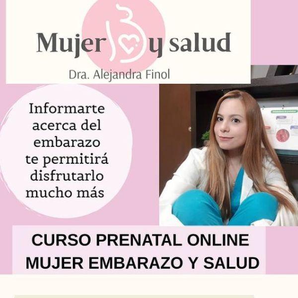 Imagem principal do produto Curso Prenatal Online