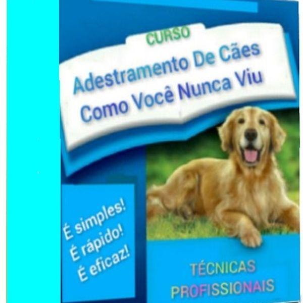 Imagem principal do produto Adestramento de Cães como Você Nunca Viu