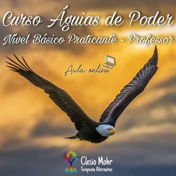 Imagem principal do produto Curso Águias de Poder - Nível Básico Praticamente Professor