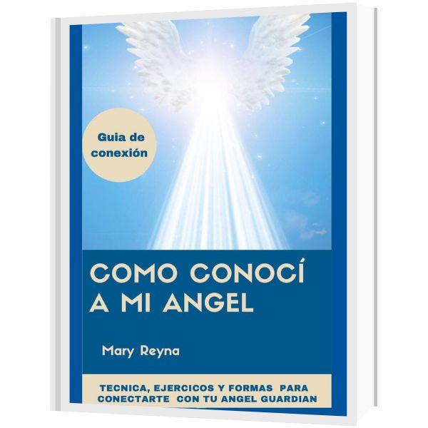 Imagem principal do produto ¿Cómo conocí a mi ángel?