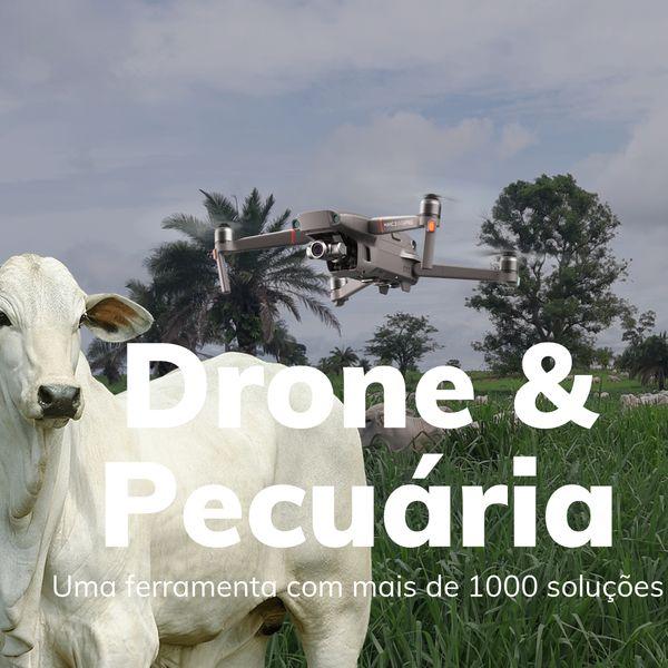 Imagem principal do produto Drone na pecuária: Uma ferramenta com mais de 1000 soluções