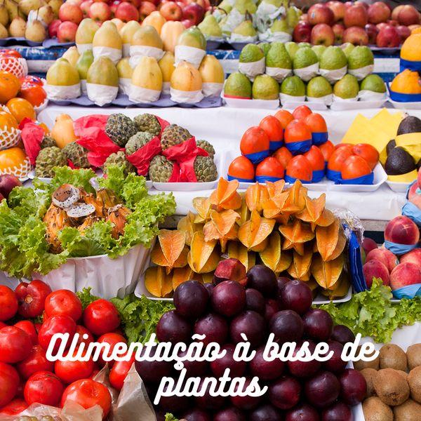 Imagem principal do produto Alimentação à base de plantas
