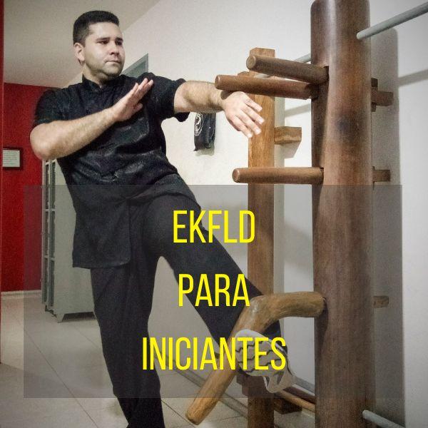 Imagem principal do produto Leonardo Dias Kung Fu Wing Chun para Iniciantes