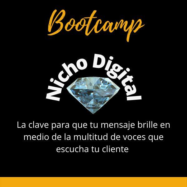 Imagem principal do produto Bootcamp: Nicho Digital