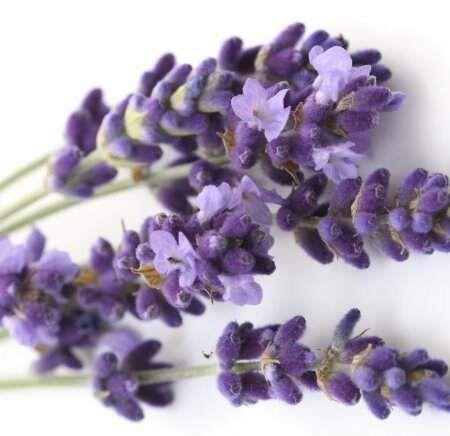 Sueli Alencar - Aromaterapeuta