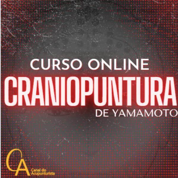 Imagem principal do produto Craniopuntura de Yamamoto
