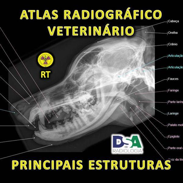 Imagem principal do produto ATLAS RADIOGRÁFICO VETERINÁRIO : PRINCIPAIS ESTRUTURAS
