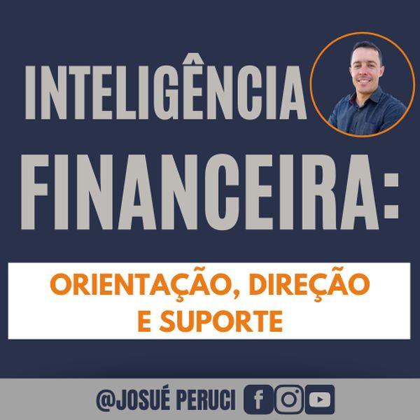 Imagem principal do produto Inteligência Financeira: organização, direção e suporte