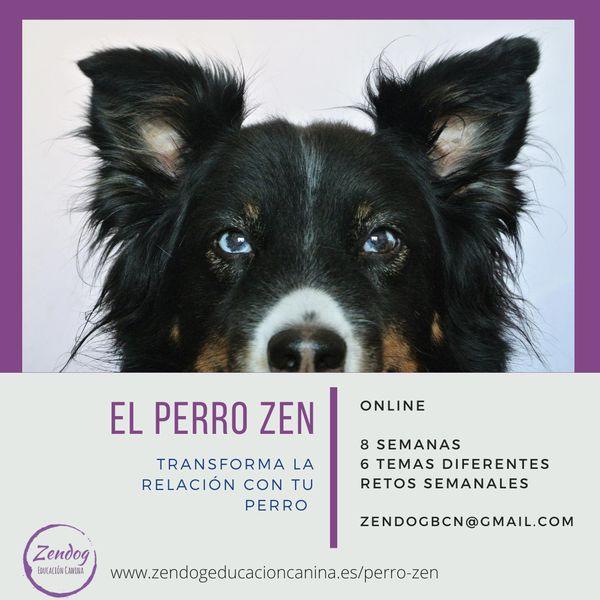 Imagem principal do produto El Perro ZEN
