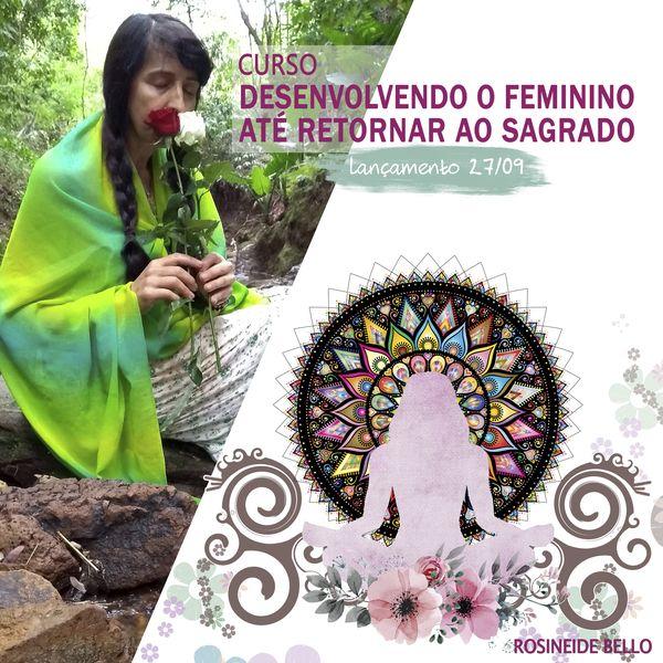 Imagem principal do produto Desenvolvendo o Feminino até retornar ao Sagrado