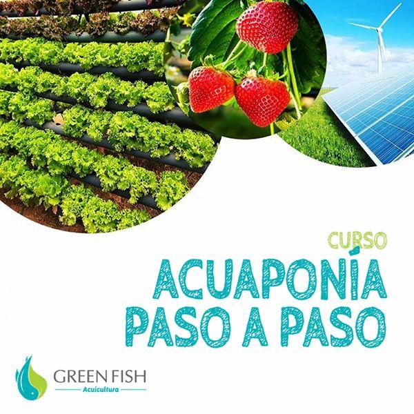 Imagem principal do produto Acuaponía Paso a Paso