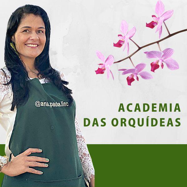 Imagem principal do produto Academia das Orquídeas