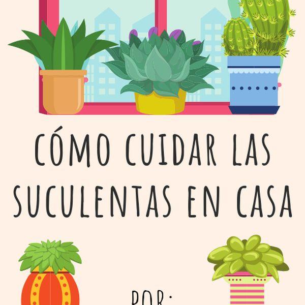 Imagem principal do produto Guía sobre cómo cuidar las suculentas en casa.