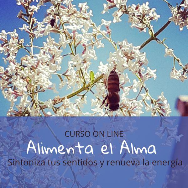 Imagem principal do produto Alimenta el Alma - Renueva la Energía de tu Ser
