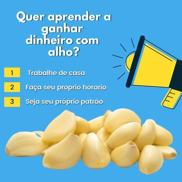 """Imagem principal do produto FATURANDO COM """"ALHO"""" (ACESSO VITALÍCIO)"""
