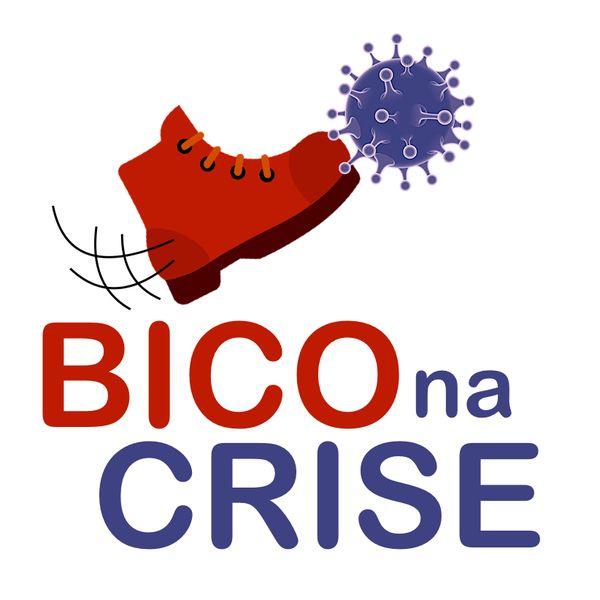 Imagem principal do produto Bico na Crise