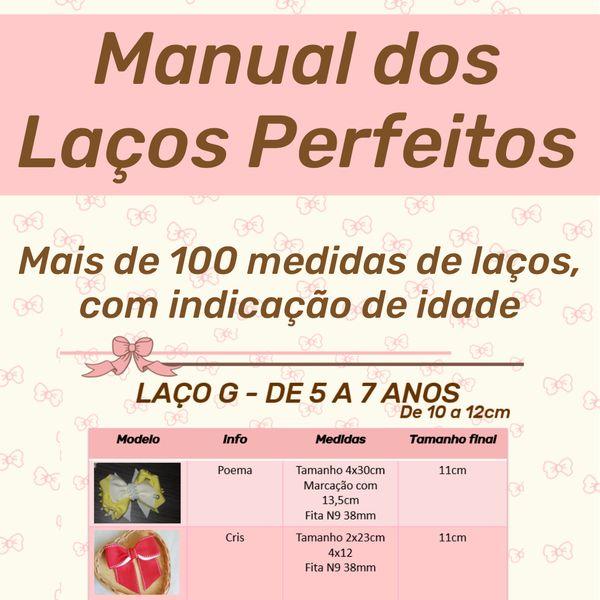 Imagem principal do produto Manual Dos Laços Perfeitos